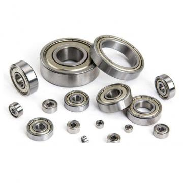 NACHI 6006-2NSENR  Single Row Ball Bearings
